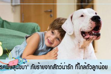 """""""โรคพิษสุนัขบ้า"""" ภัยร้ายจากสัตว์น่ารัก ที่ใกล้ตัวลูกน้อย"""